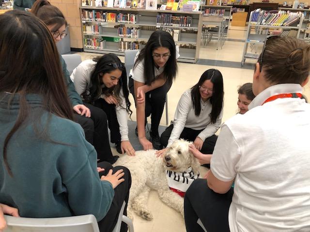 St. John Ambulance Therapy Dog Visit